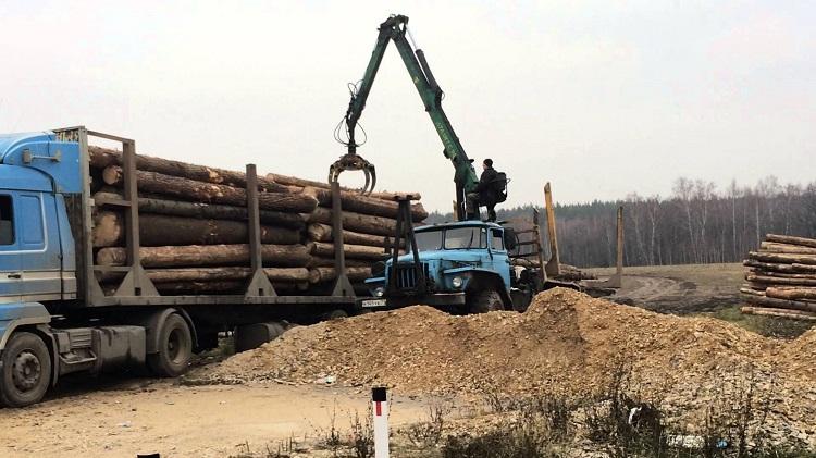 Погрузка на лесовоз