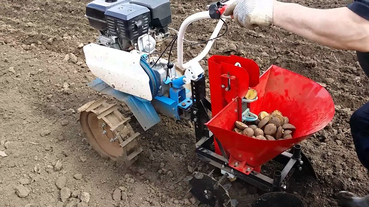 Мотоблок с картофелем